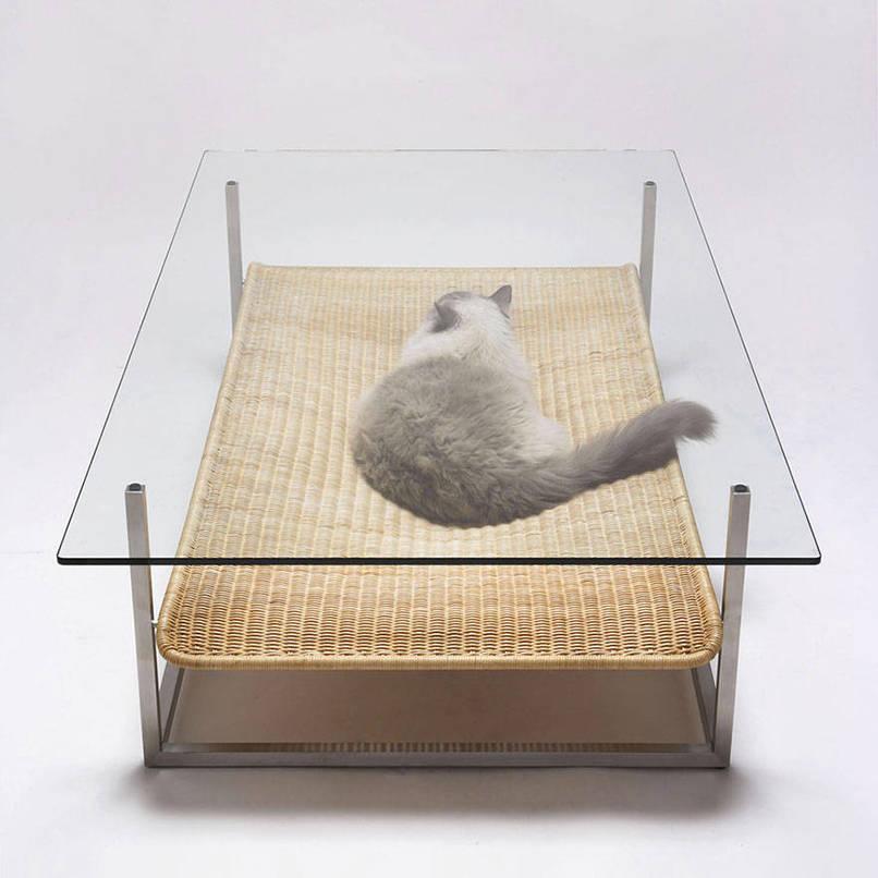 design meubels voor katten